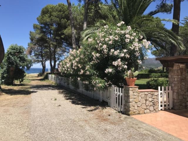 Villa mit Garten mit Blick auf das Meer - Insel Elba